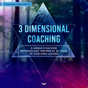 3 Dimensional Coaching
