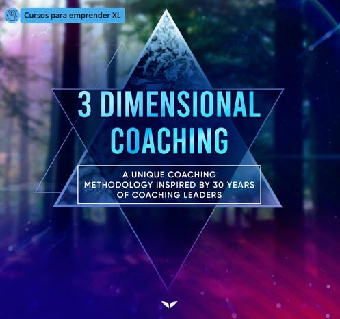 3 Dimensional Coaching